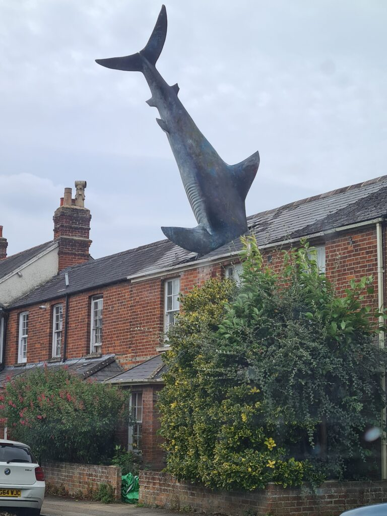 shark in house roof in Oxford British humour